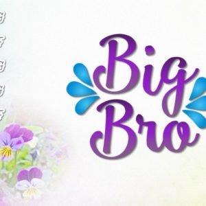 Big Brother Vector Clipart SVG File for Cricut