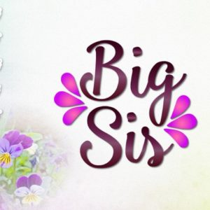 Big Sister SVG Files for Cricut Iron On