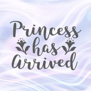 Funny Baby Girl Onesie SVG Files for Cricut Princess Has Arrived New Baby Coming