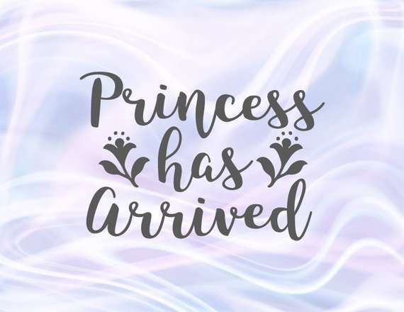 Princess Has Arrived Svg Baby Girl Onesie New Baby Coming Take Home Clothes Print Svg Files For Cricut