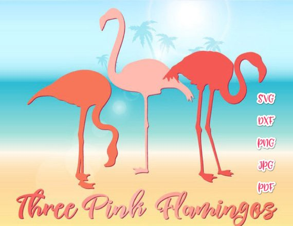 Flamingo SVG Tropical Clipart 3 Pink Three Summer graphics Mug Bag Print Laser Cut