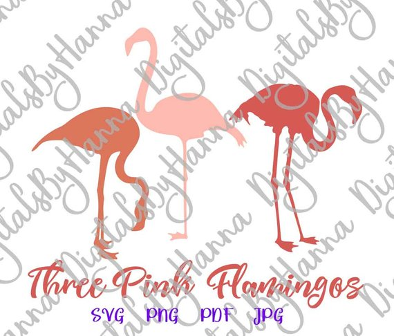 Flamingo SVG Tropical Clipart Summer graphics t-Shirt Tee Mug Bag Print