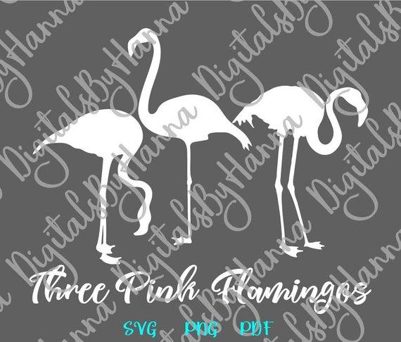 Flamingo SVG Tropical Clipart Pink Summer graphics Tee tShirt Mug Bag Sign Print