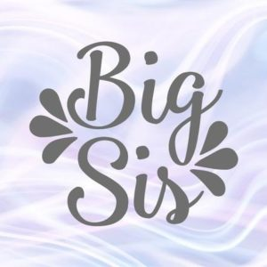 Sibling SVG Files for Cricut Big Sis Little Sorority Reveal Promoted Sister Family Baby Birth